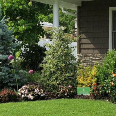 Evergreen Landscaping NY