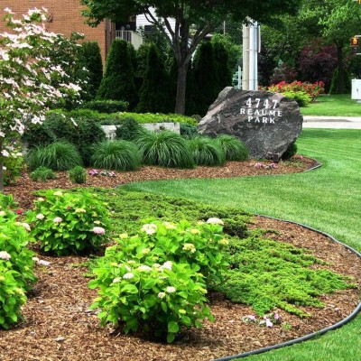 Evergreen Landscape Maintenance