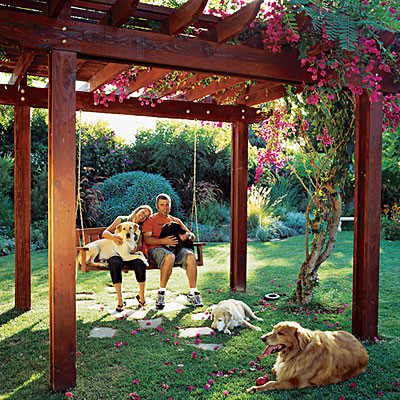 Tips for creating the best backyard designs actual home for Garden designs for dogs