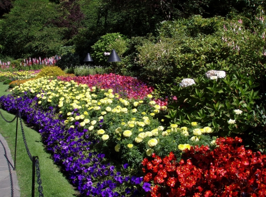 beautiful flower bed designs