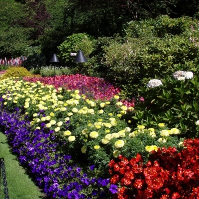 Evergreen landscaping for your beautiful garden actual home for Flower bed design ideas