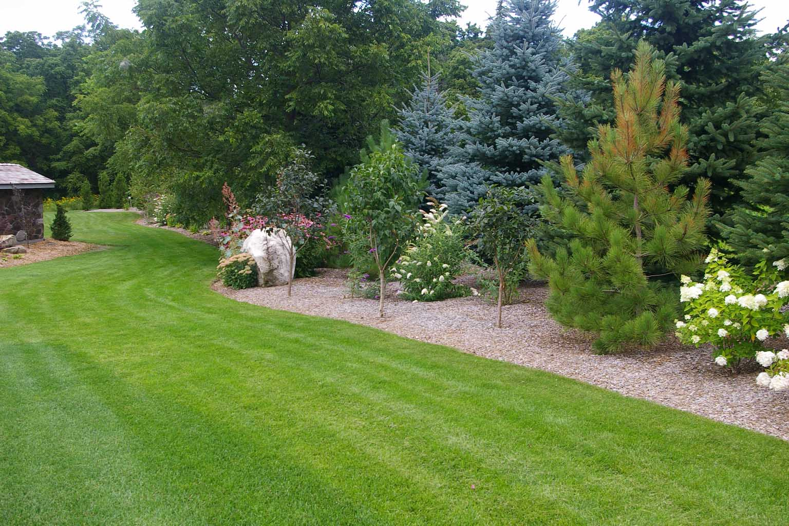 evergreen landscaping design 6