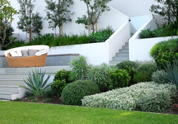 evergreen landscaping design 8
