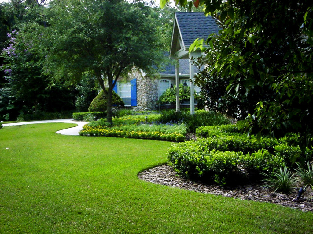 Evergreen Landscaping For Your Beautiful Garden Actual Home