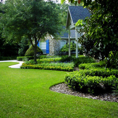 evergreen landscaping design