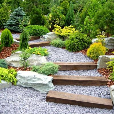 evergreen landscaping pictures