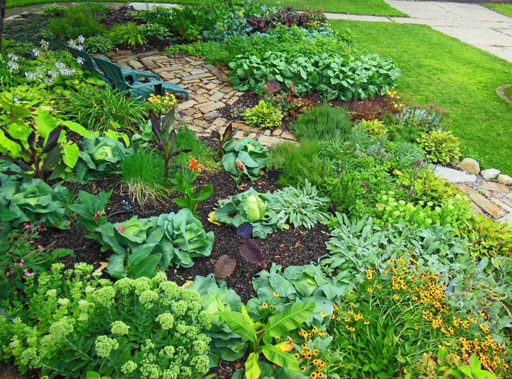 The vegetable garden ideas for your gardening inspiration for Ideas for a small vegetable garden design