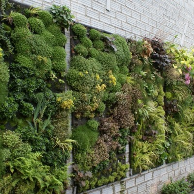 urban gardening ideas9