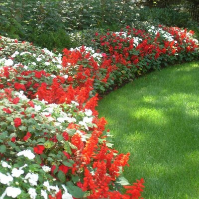 Perennial Flower Bed Design Ideas
