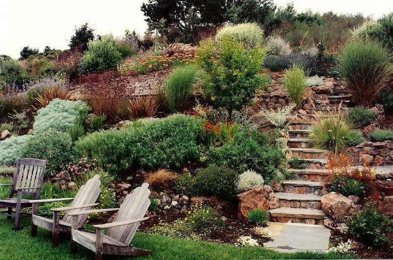 How to Landscape A Hillside