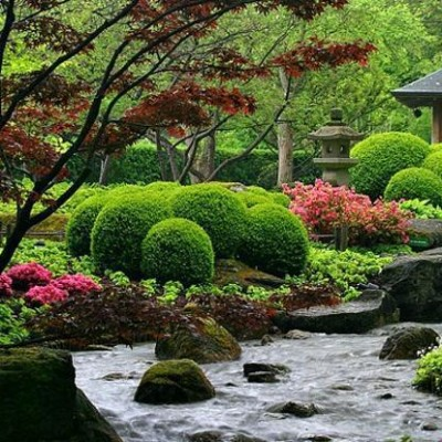 Japanese Landscape Design Photos