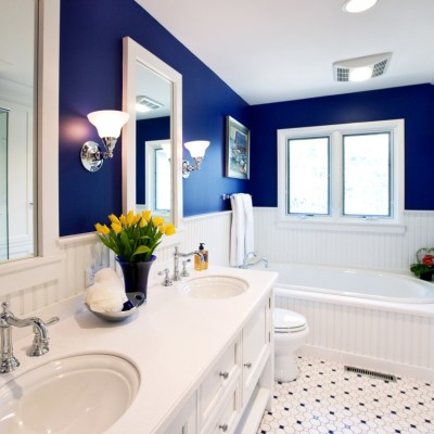 why should you choose a blue bedroom paint ideas?