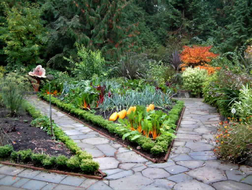 The Vegetable Garden Ideas For Your Gardening Inspiration ... on Vegetable Garden Ideas For Backyard id=78927