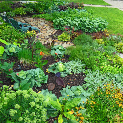 green vegetable garden ideas