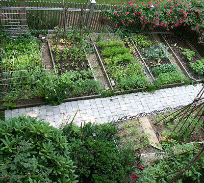 Raised Vegetable Garden Ideas